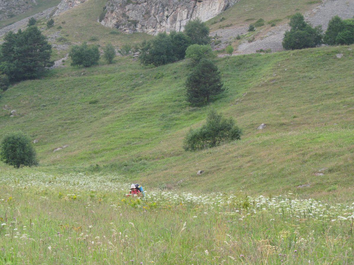 Кавказ 2017. Ущ. Каярты-су. А трава здесь высокая!